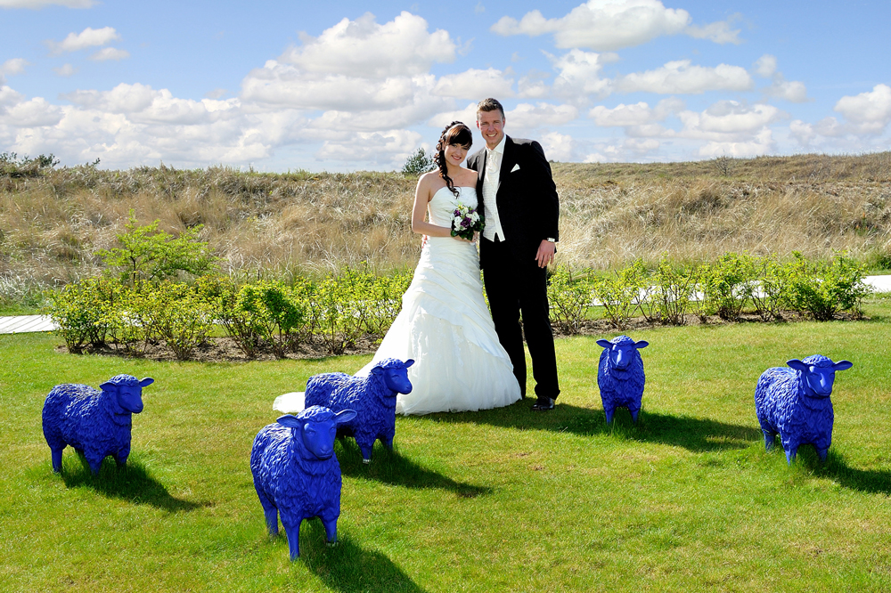 Die blauen Schafe