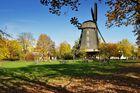 Die Britzer Mühle im Herbst......