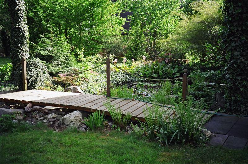 Die Brücke am Teich