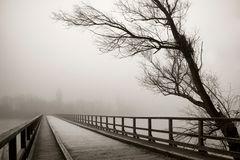 Die Brücke in den Nebel