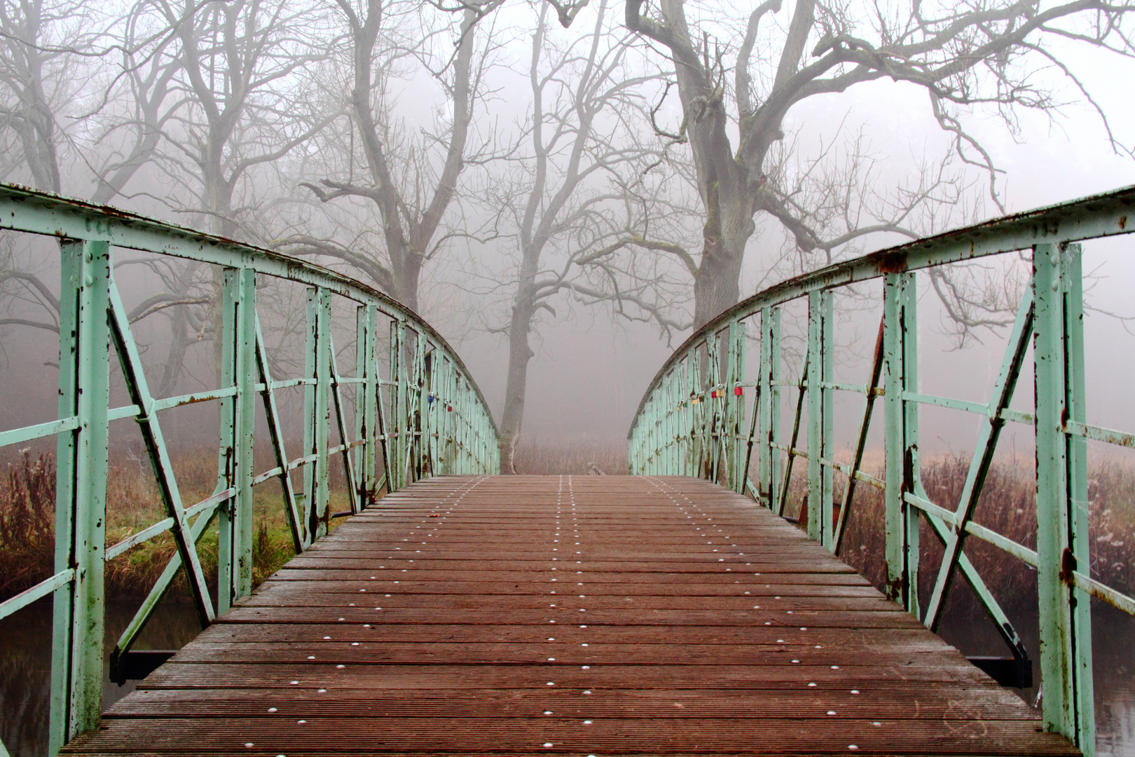 Die Brücke ins Ungewisse