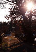 Die Brücke nach Laasche