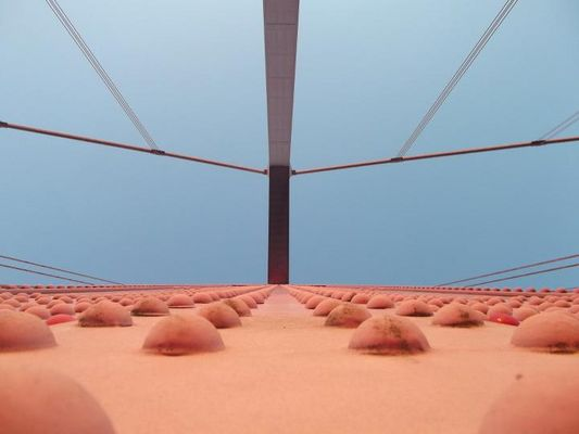 die Brücke über den Rhein