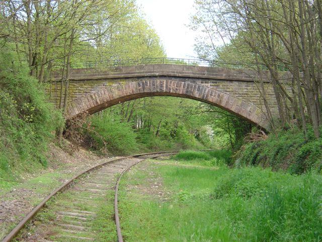 die Brücke zur Natur