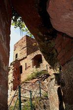 Die Burg Altdahn liegt im südlichen Pfälzerwald auf 337mü.NN,... 2