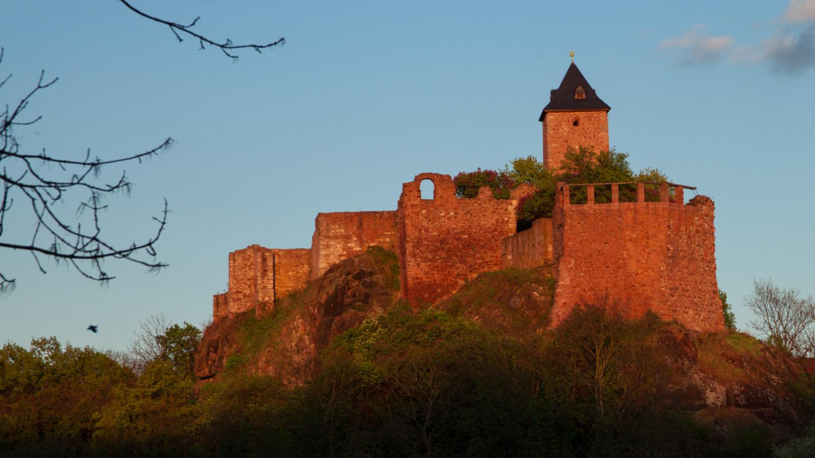 Die Burg Giebichenstein in Halle