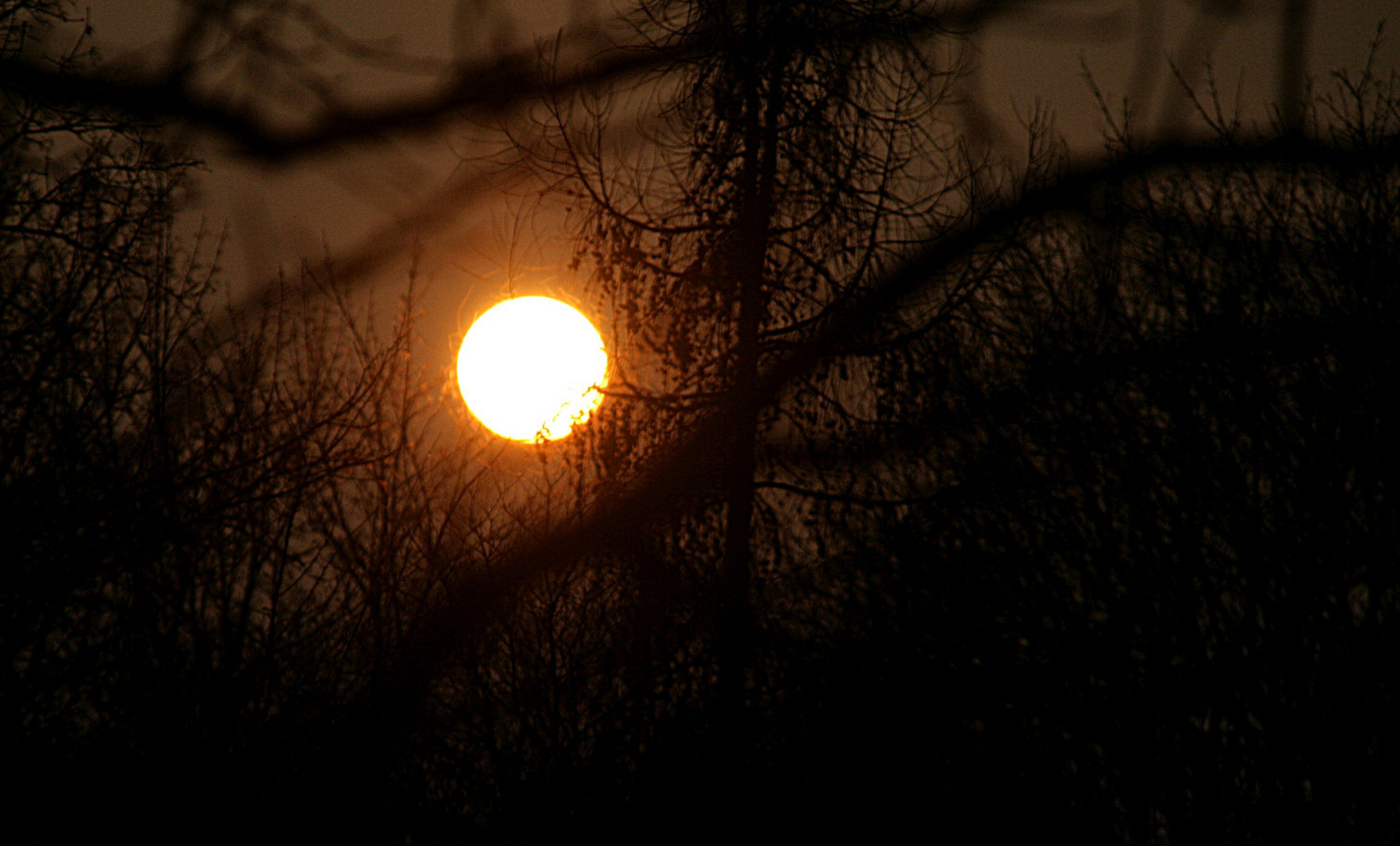Die Corona der Sonne
