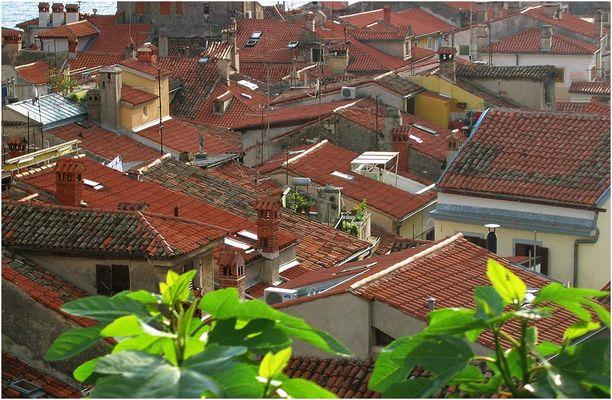 Die Dächer