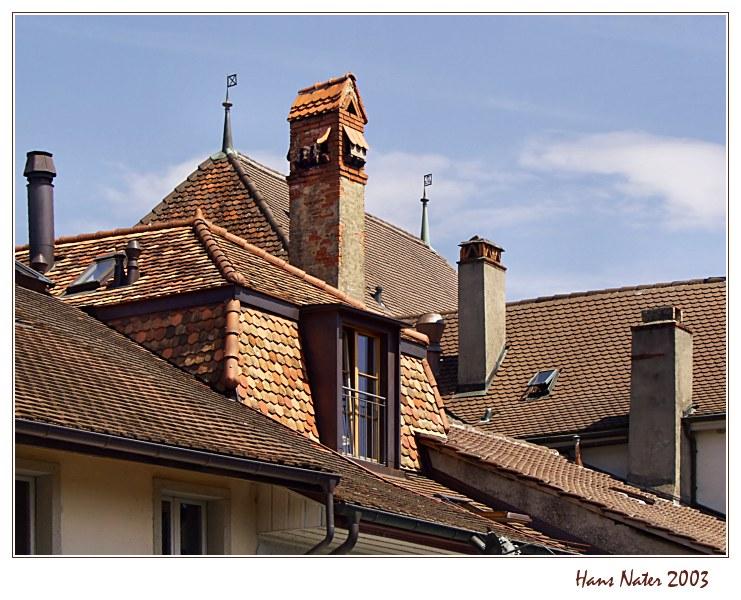 die Dächer von Estavayer-le-Lac