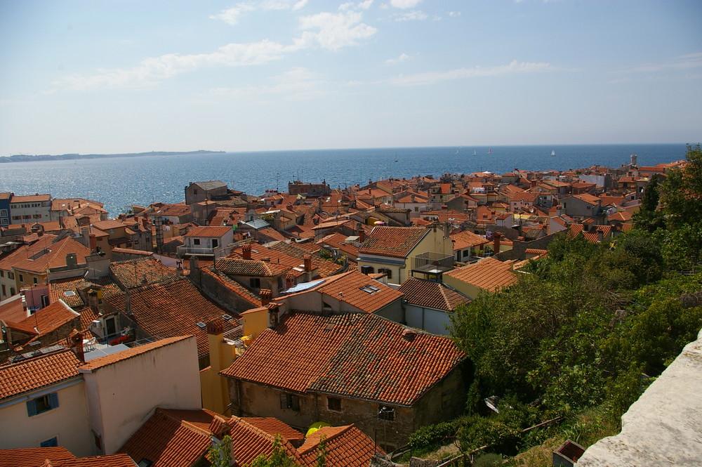 die Dächer von Piran