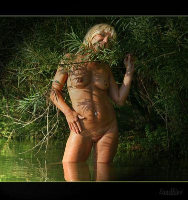 Die dicke Biene von Loch Ness !