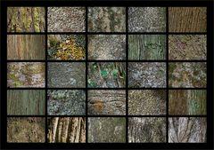 Die dicken Bäume im Parque Terra Nostra, Azoren