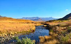 Die Drakensberge