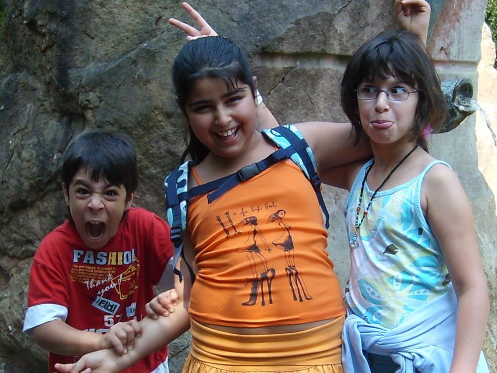 Die drei lustigen Freunde