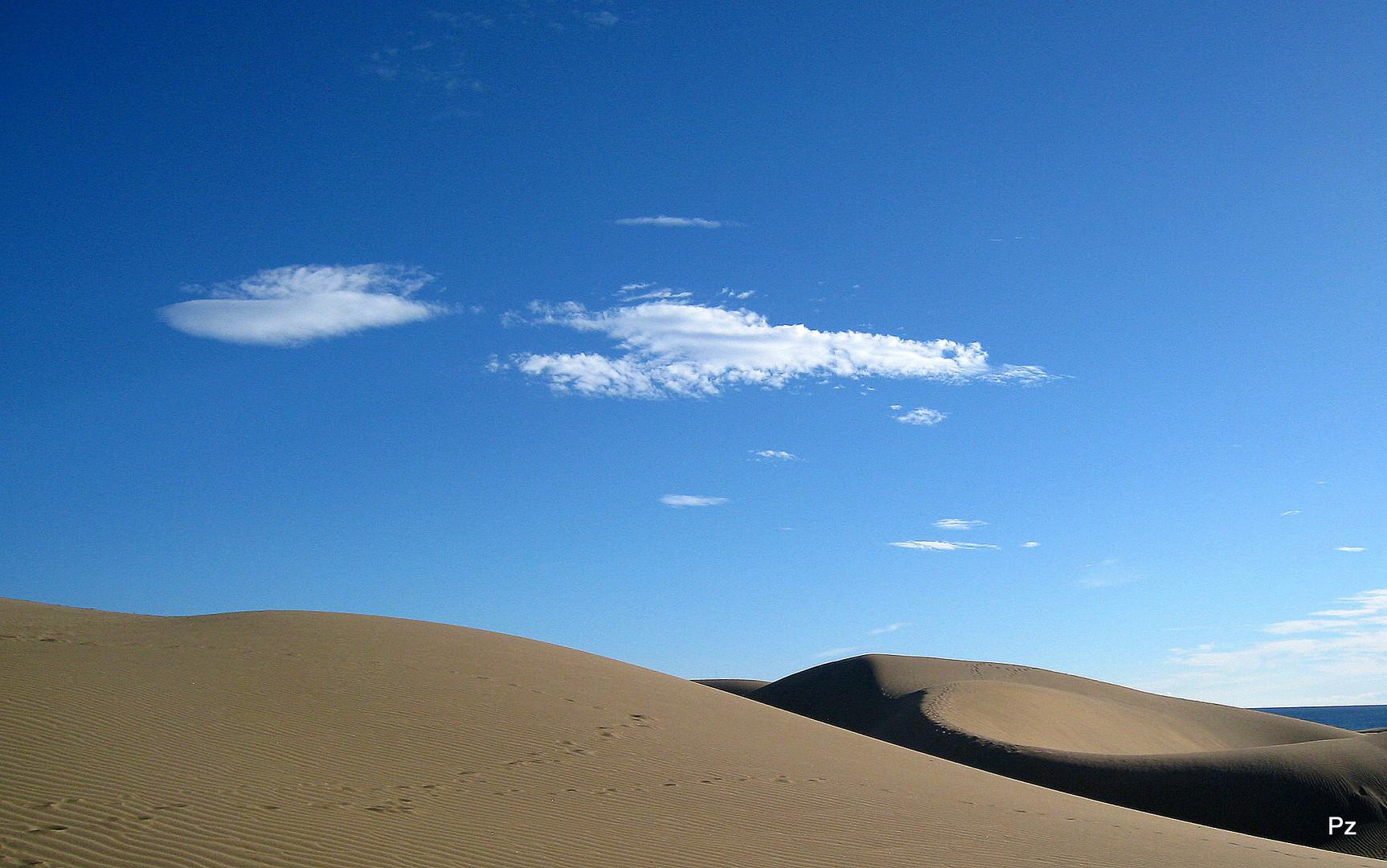 Die Dünen von Las Palomas ...