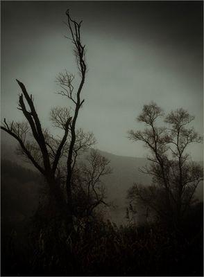 Die dunklen Tage