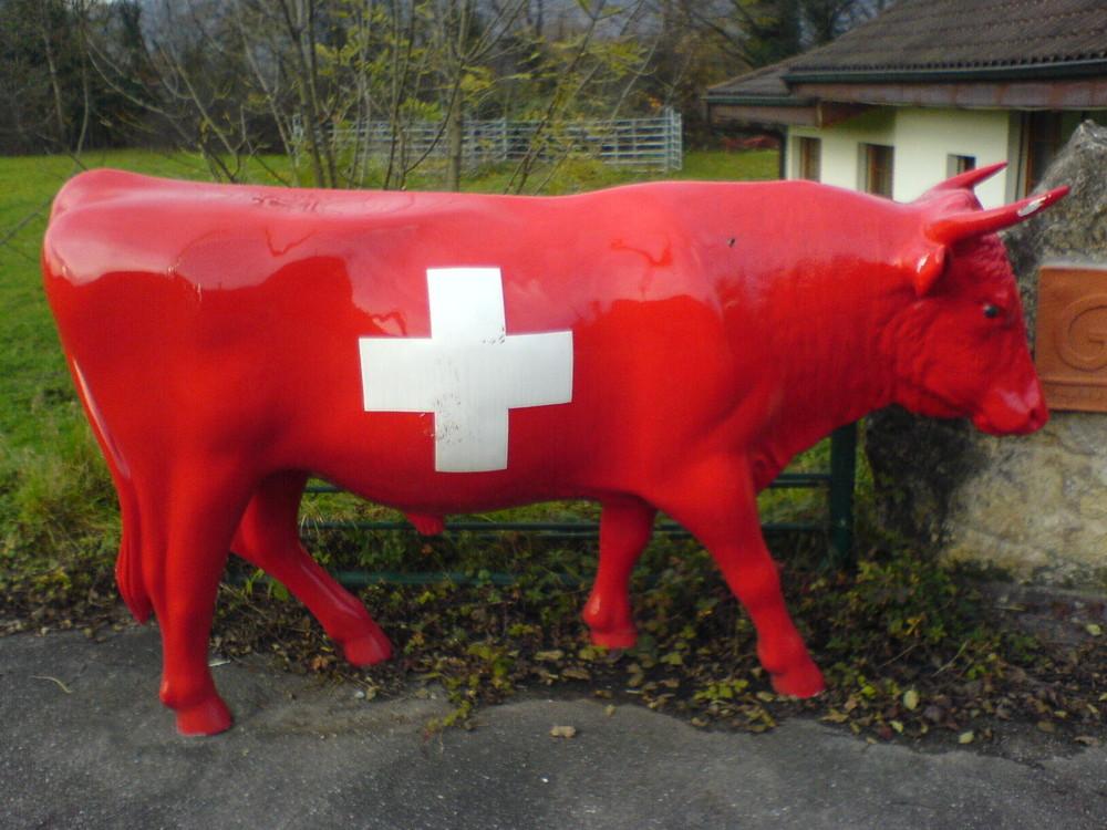 Die echte Schweizer Kuh!