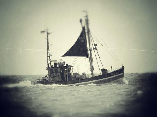 Die Edelweiss umschifft die Insel Norderney...