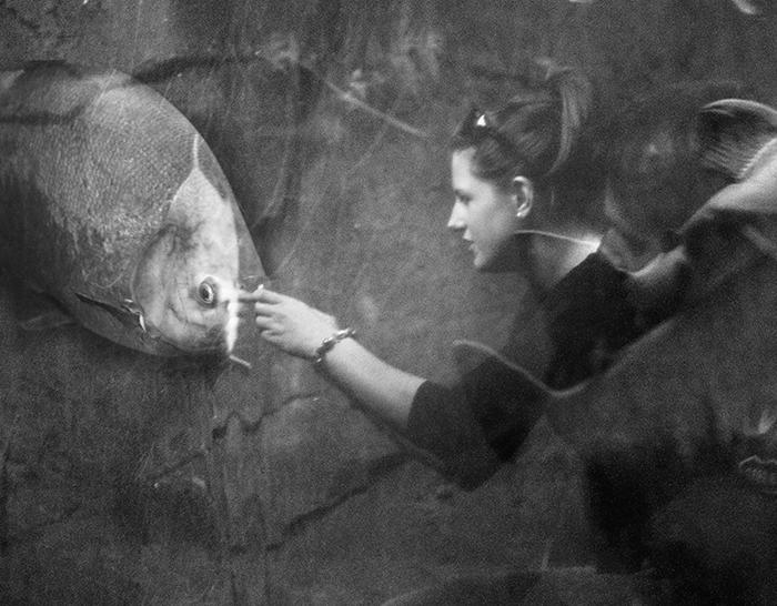 die eigenartige Welt der Fische