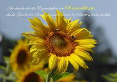 Die Eigenschaft der Sonnenblume