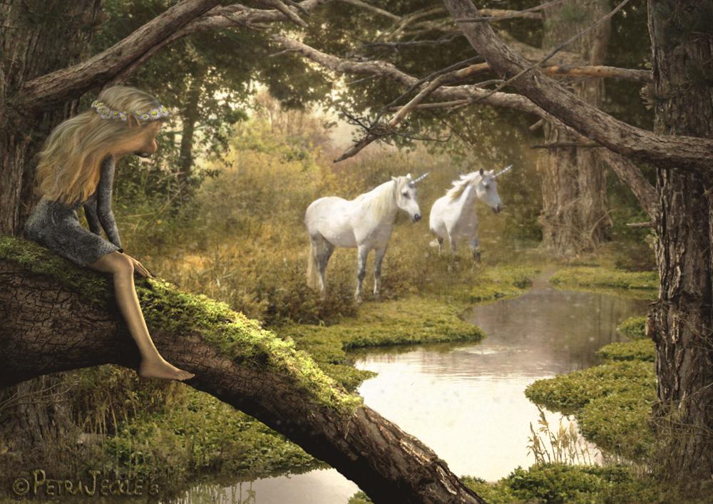 Bilder Von Einhörner : die einh rner foto bild fotomontage fantasy mystery digiart bilder auf fotocommunity ~ Frokenaadalensverden.com Haus und Dekorationen