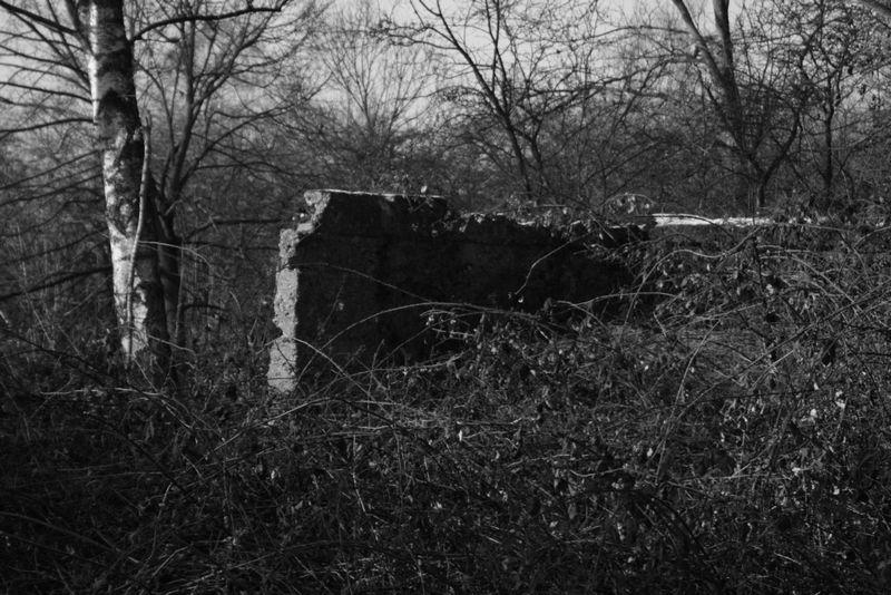 Die einsame Mauer