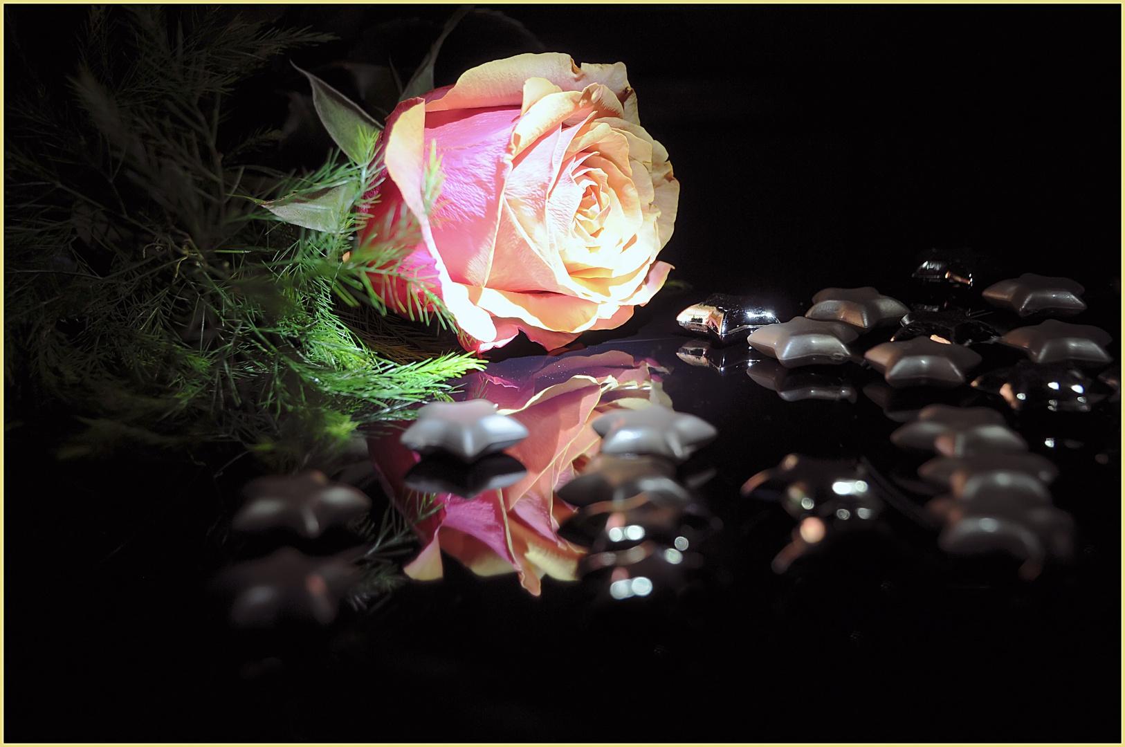 Die einsame Rose