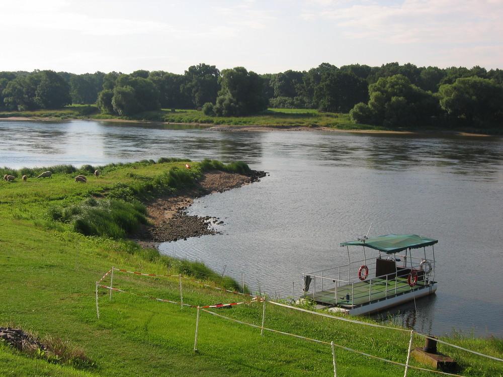 Die Elbe In Brambach