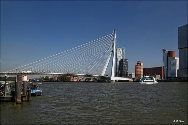 Die Erasmusbrücke