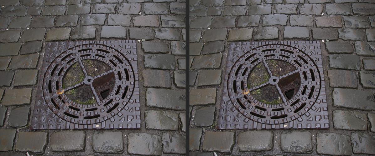 Die Erhabenheit des namenlosen Kanaldeckels im Frühlingsregen