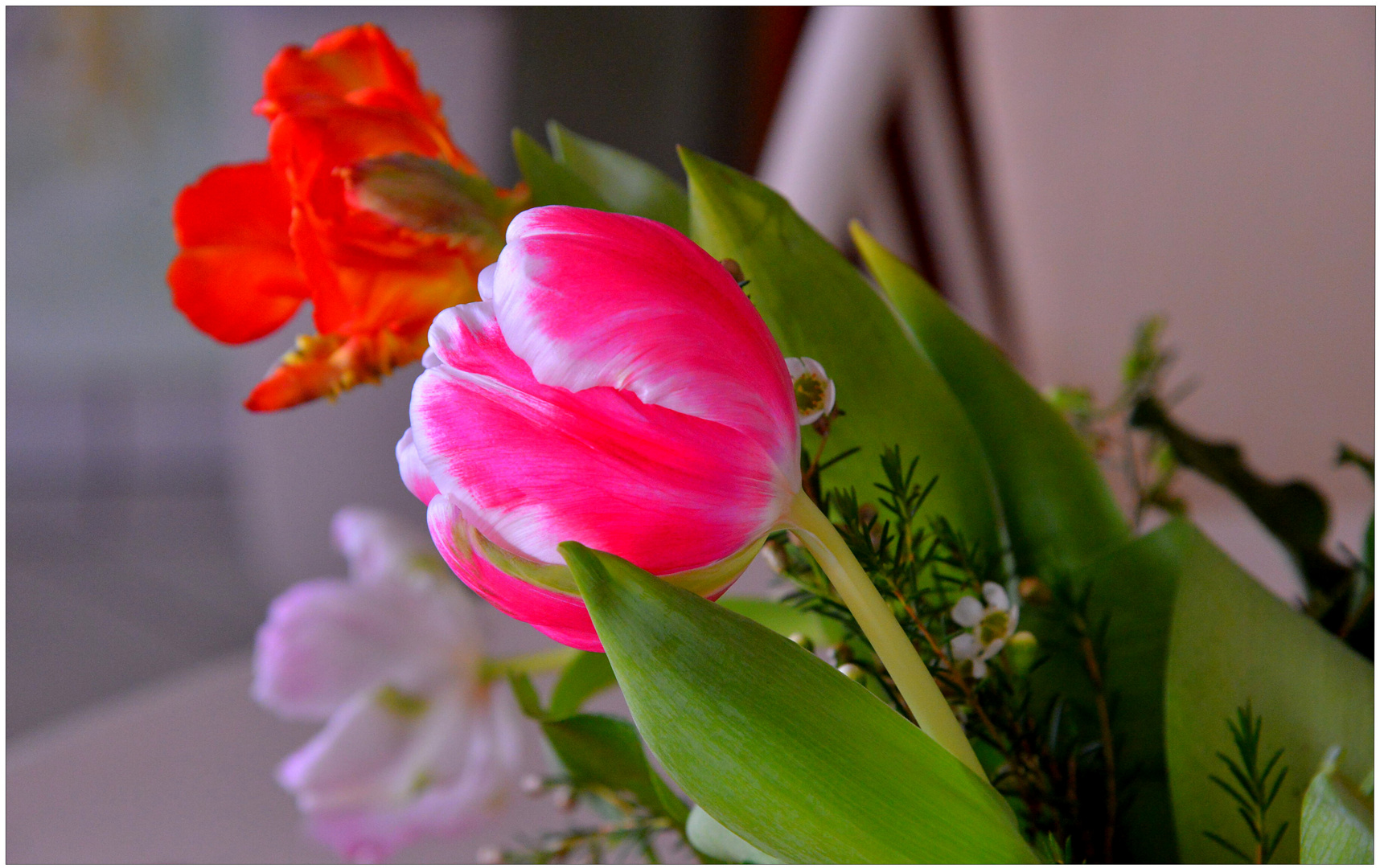 die ersten Blumen I (las primeras flores I)