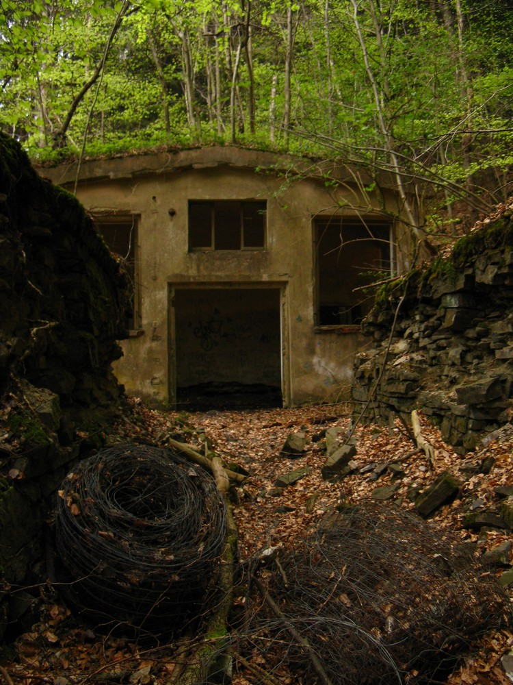 Die Fabrik im Wald