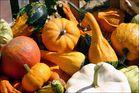 Die Farbe des Herbstes