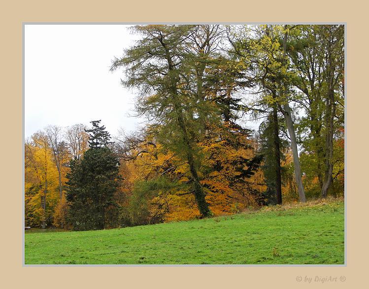Die Farbe Herbst 01