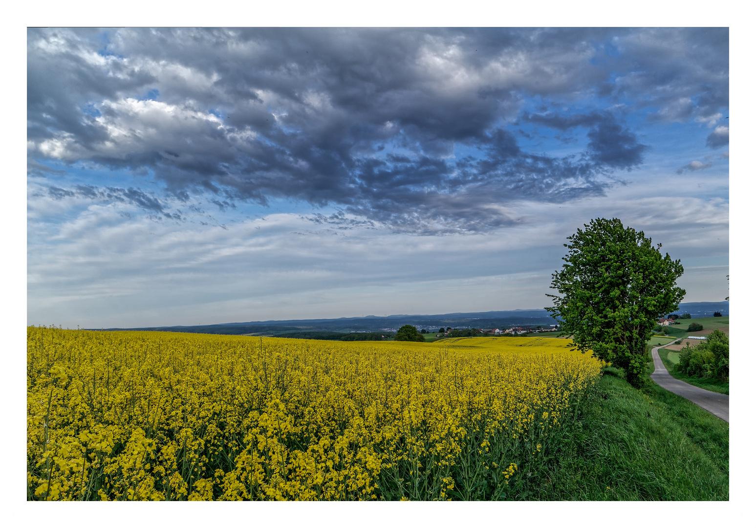 Atemberaubend Frühlingsbilder Zum Einfärben Ideen - Framing ...