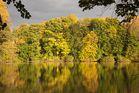 Die Farben des Herbstes ...