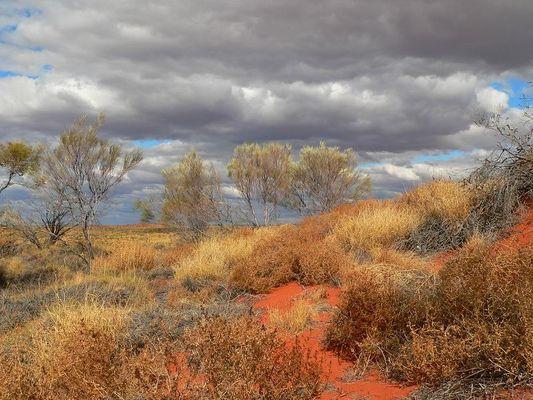 Die Farben des Outback