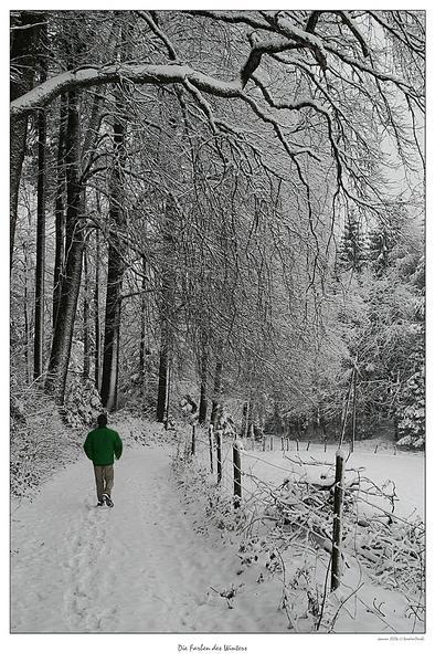 Die Farben des Winters