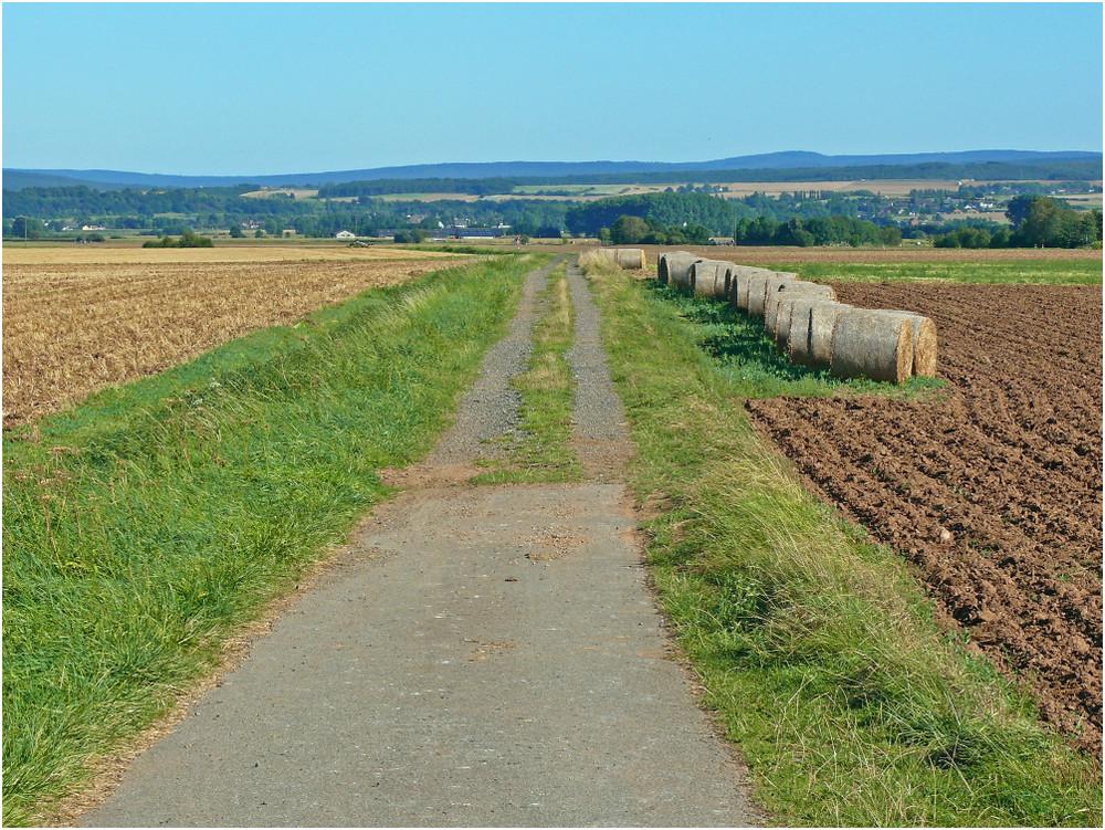 Die Felder sind geräumt.....