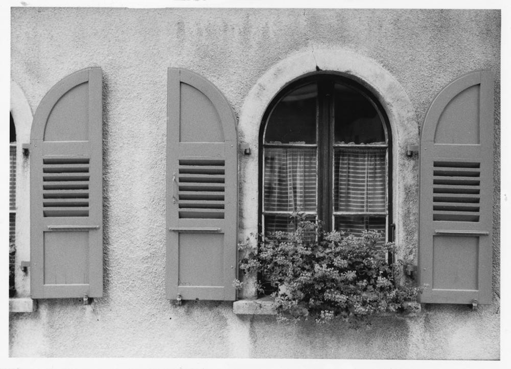 Die Fenster vom Saaserstübli