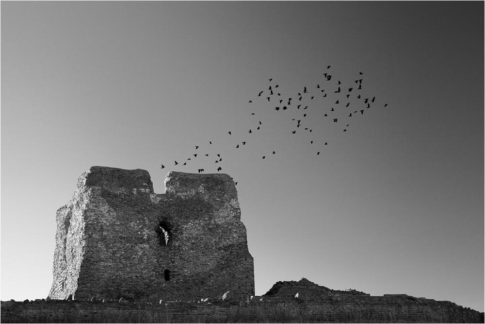 ... die Festung der Raben