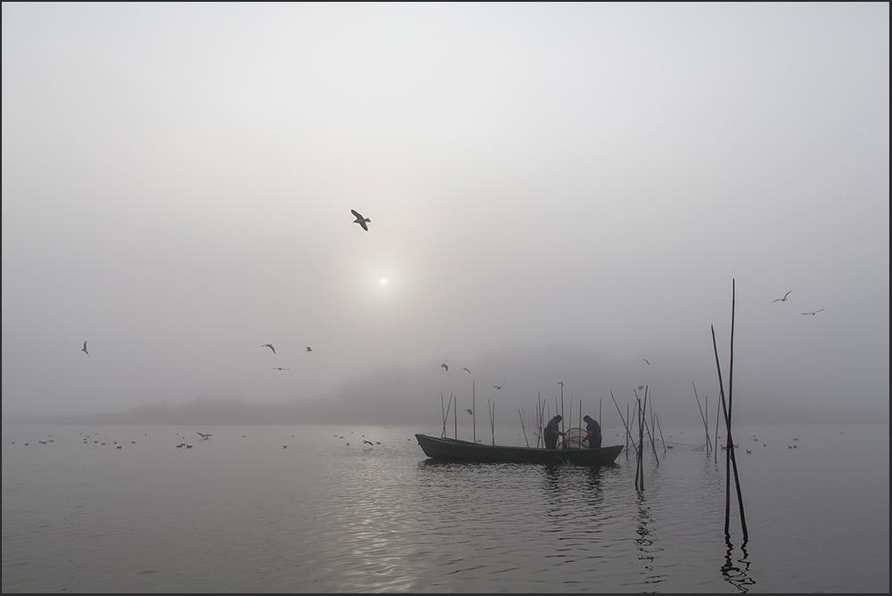 Die Fischer vom See..
