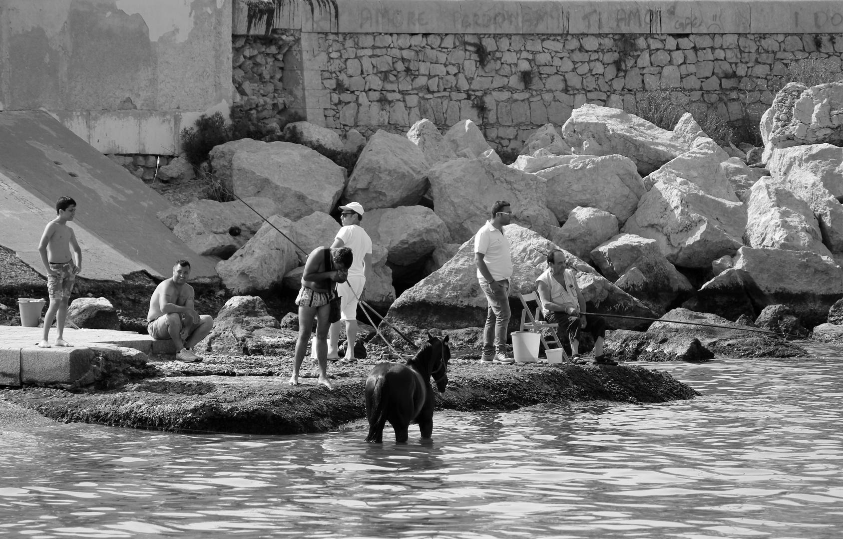 Die Fischer von Palermo