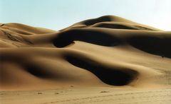Die Formen der Wüste