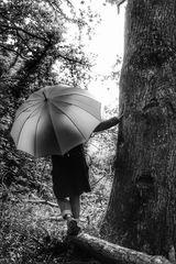 Die Frau mit dem Regenschirm wagt den Weg durch die Wildnis (40)