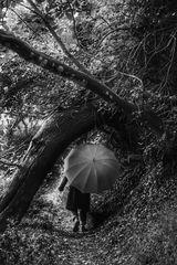 Die Frau mit dem Regenschirm, wandert auf dem  GR34 bei Plougoulm