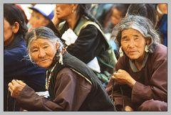 Die Frauen von Toktok