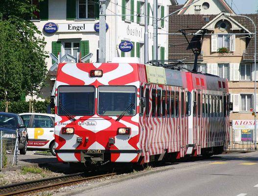 Die Frauenfeld-Wil Bahn