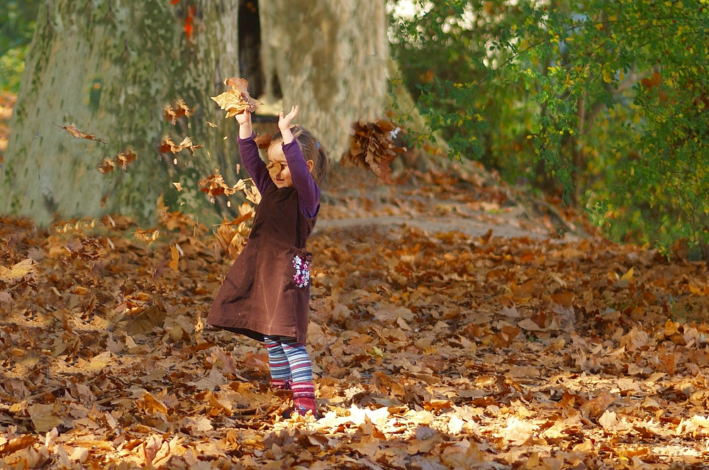 Die freuden im herbst foto bild kinder kinder ab 2 for Herbst im kindergarten