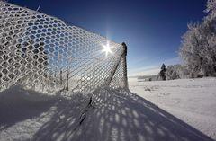 Die Frostgrenze